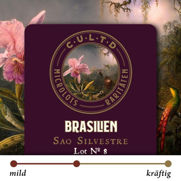 brasilien_lot8-min